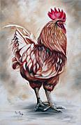 Ilse Kleyn Framed Prints - Rooster 18 of 10 Framed Print by Ilse Kleyn