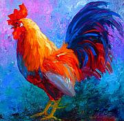 Chickens Paintings - Rooster Bob by Marion Rose