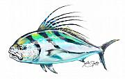 Fly Fishing Digital Art Framed Prints - Rooster Fish Study Framed Print by Mike Savlen