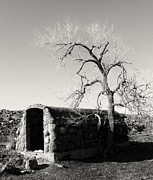 Rock Shelter Metal Prints - Root Cellar Metal Print by Tony Grider