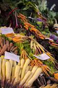 Carrot Photos - Root Vegetables at the Market by Heather Applegate