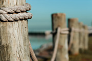 Photogaph Art - Rope Fence by Josh Whalen