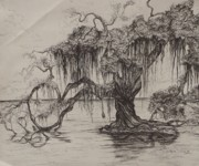 Gulf Drawings Framed Prints - Rope Swing Framed Print by Sarah Lonthier
