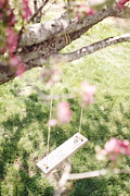 Crab Apple Tree Blossoms Prints - Rope Swing Print by Stephanie Frey