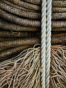 Netting Photo Metal Prints - Ropes and Fishing Nets Metal Print by Carol Leigh