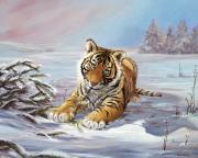 The Tiger Paintings - Roque playful tiger cub by Silvia  Duran