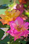 Multicolored Roses Prints - Rose 114 Print by Pamela Cooper