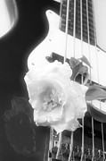 Music Photo Prints - Rose and Guitar Black White Print by M K  Miller