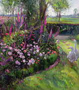 Geese Painting Posters - Rose Bed and Geese Poster by Timothy Easton