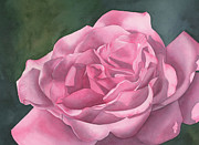 Rose Blush Print by Leona Jones