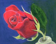 Bud Drawings Posters - Rose Bud Poster by Yoshiko Mishina