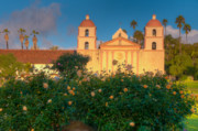 Rose Tower Posters - Rose Garden At Santa Barbara Mission Poster by Connie Cooper-Edwards