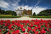 Manor Prints - Rose garden of Adare Manor Ireland Print by Pierre Leclerc