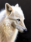 Wolf Portrait Paintings - Rose III by Sandi Baker