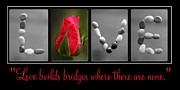 Love Letter Prints - Rose Love Print by PMG Images