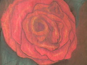 Red Rose Pastels - Rose by Mahalaleel Muhammed-Clinton