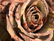 Photo Manipulation Originals - Rose Money by Digit Art Mariel Everling