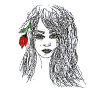 Rose Drawings Prints - Rose Print by Navo Art