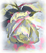 Beautiful Images Prints - Rose Painting Print by Cheryl Young