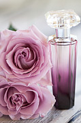 Violet Photos - Rose Perfume by Kim Fearheiley