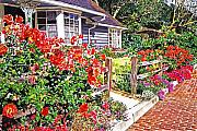 Rose Bushes Posters - Rose Ranch House - Bel-Air Poster by David Lloyd Glover