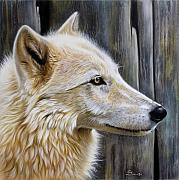 Wolf Portrait Paintings - Rose by Sandi Baker