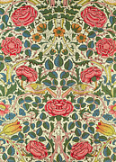 Textile Framed Prints - Rose Framed Print by William Morris