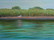 Spoonbill Paintings - Roseate Spoonbill On East Creek by Patty Weeks