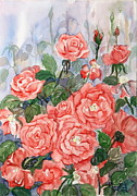 Phong Trinh Metal Prints - Roses 2 Metal Print by Phong Trinh