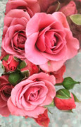 Roses And Buds Print by Debra     Vatalaro