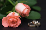 Engagement Photo Prints - Roses and rings Print by Stefan Nielsen
