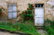 France Doors Framed Prints - Roses And Wildflowers Frame The Wood Framed Print by Bruce Dale