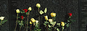 War Monuments And Shrines Prints - Roses Are Left At The Vietnam Veterans Print by Richard Nowitz
