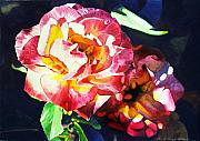 Most Viewed Framed Prints - Roses Framed Print by David Lloyd Glover