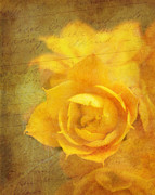 Reminiscing Prints - Roses for Remembrance Print by Judi Bagwell