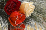 Cheryl Cencich Art - Roses of Three by Cheryl Cencich