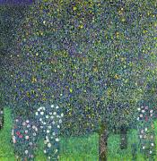 Under The Trees Prints - Roses under the Trees Print by Gustav Klimt