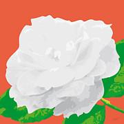 Rosesummer-a Print by Eakaluk Pataratrivijit