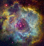 Interstellar Clouds Posters - Rosette Nebula Ngc 2244 In Monoceros Poster by Filipe Alves