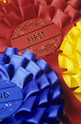 Rosettes Photos - Rosettes by David Aubrey