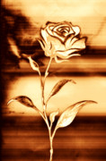 Burnt Digital Art Metal Prints - Rosewood Metal Print by Dolly Mohr