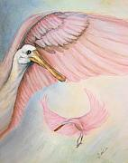 Spoonbill Paintings - Rosey Spoonbill Dance by Bette Orr