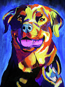Dog Poster Framed Prints - Rottweiler - Starr Framed Print by Alicia VanNoy Call