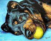 Tennis Painting Framed Prints - Rottweiler with Ball Framed Print by Dottie Dracos