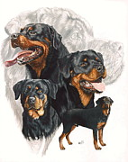 Working Dogs Framed Prints - Rottweiler with Ghost Background Framed Print by Barbara Keith