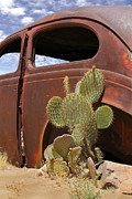 Route 66 Framed Prints - Route 66 Cactus Framed Print by Mike McGlothlen