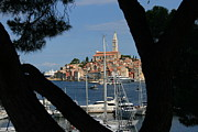 Rovinj Posters - Rovinj Poster by Andy  Mercer