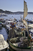Rovinj Posters - Rovinj Fisherman Poster by Madeline Ellis