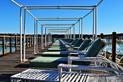Row Of Beach Chairs Print by Alex Schindel