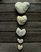 Lainie Wrightson Prints - Row of Hearts Print by Lainie Wrightson